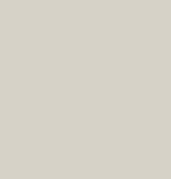 0527-grigio-argento-copy